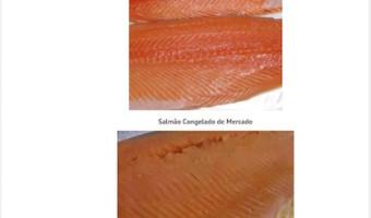 Por que não devo congelar peixe para sashimi ou sushi?