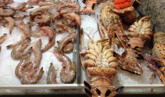 Onde comprar peixe fresco para sushi e sashimi no Rio de Janeiro?